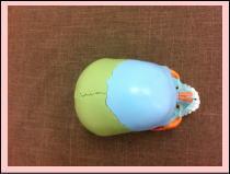 【自律神経失調症・頭痛・首こり・肩こり‐整体】・・・福岡市中央区六本松の整体院